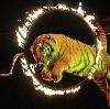 Цирки в Горбатове